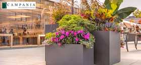 Commercial Planters: Selection Considerations