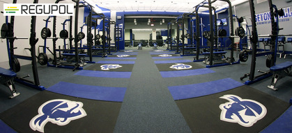 Strength and Conditioning Facilities