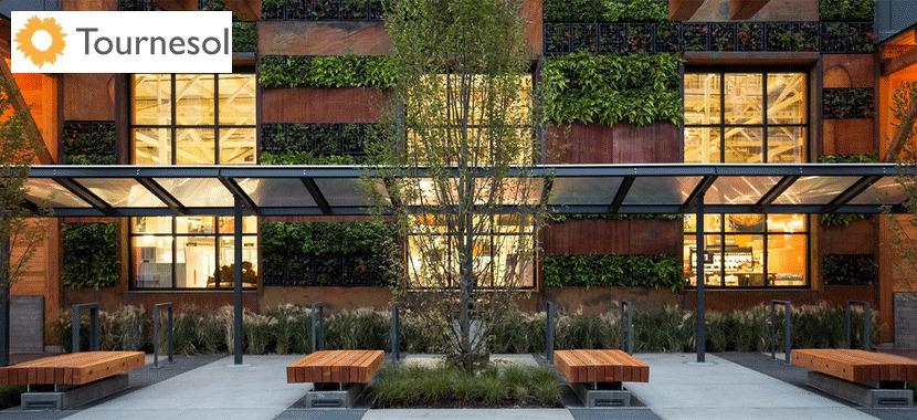 Greening the Amenity Deck